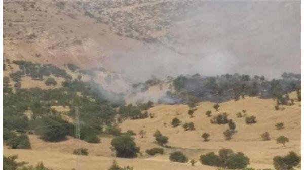 Diyarbakır Lice'de eş zamanlı saldırı